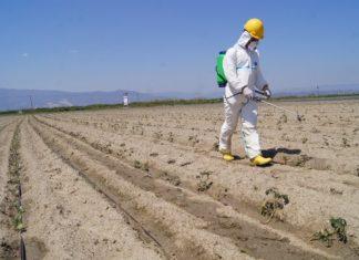 DuPont, geleneksel tarım yöntemlerini akıllı teknolojilerle birleştirme hedefiyle yola çıkan projeye, inovatif yaklaşımı ve yenilikçi çözümler sunan tüm iş kollarıyla destek olacak.