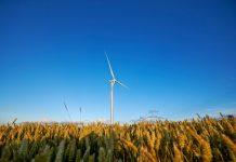 Kalyon İnşaat ve Türkerler Enerji Grubu, üçlü bir konsorsiyum oluşturarak Rüzgar Enerjisi Yenilenebilir Enerji Kaynak Alanı (YEKA) ihalesine birlikte gireceklerini duyurdu.
